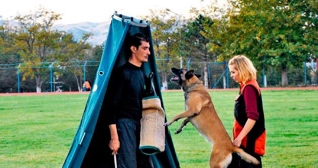 Eğitimli köpeklerle gösteri sunuldu