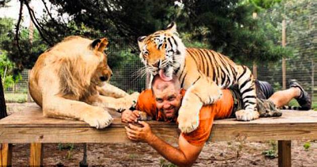Evini aslanlarla kaplanlara açtı