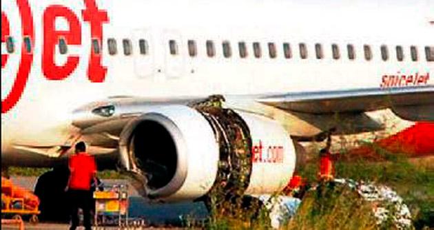 Hindistan'da uçak pistte sığıra çarptı