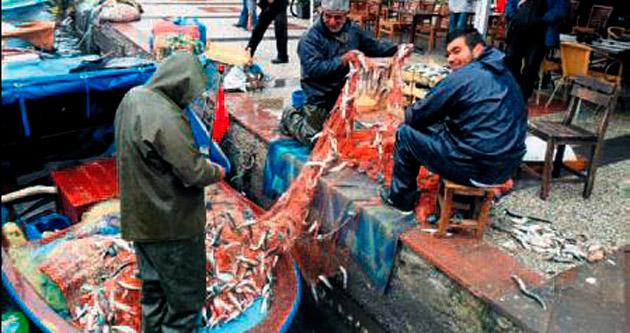 Yasa dışı avcılık, balıkçıların yarası