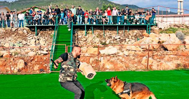 Köpeği olanlar da tatil yapabilecek