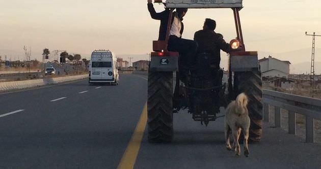 Köpeğini traktörün arkasına bağladı ve...