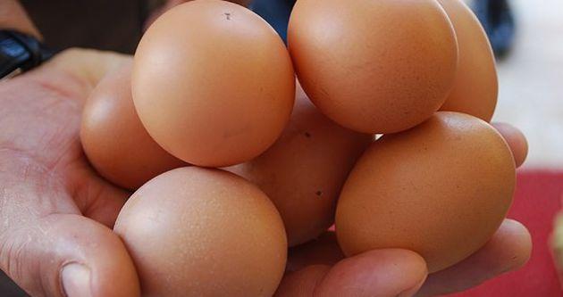 Türkiye, yumurtaya doymuyor!