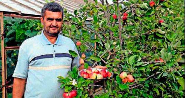 4 mevsim dalından elma yenebilecek