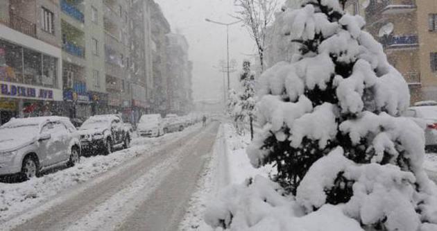 Hakkari ve Bitlis'te kar yolları kapattı