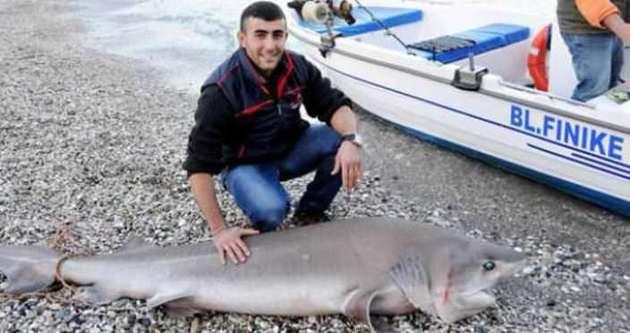 Oltayla 3 metrelik köpekbalığı yakaladı