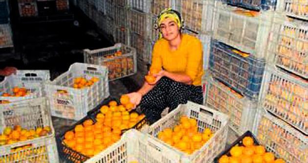 Finike portakalı yerinde sayıyor