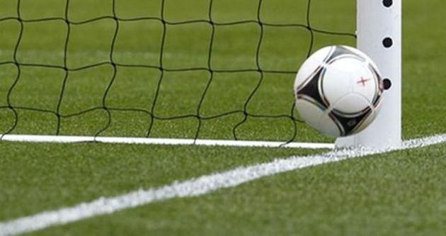 Bundesliga'da gol çizgisi teknolojisi dönemi