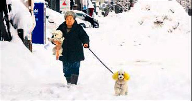 Japonya'da genel seçime kar engeli