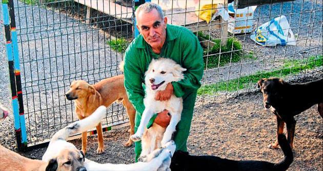 Emekli maaşıyla köpeklere barınak