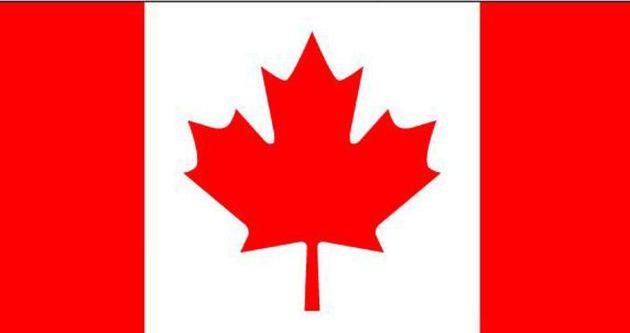 Kanada para olarak bakın ne kullanmış!