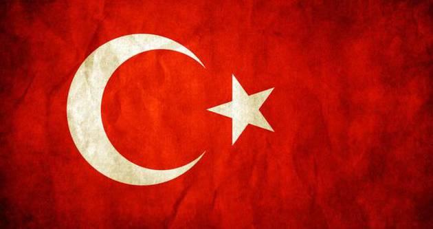 2015 yılı Türkiye'nin reform şovu olacak