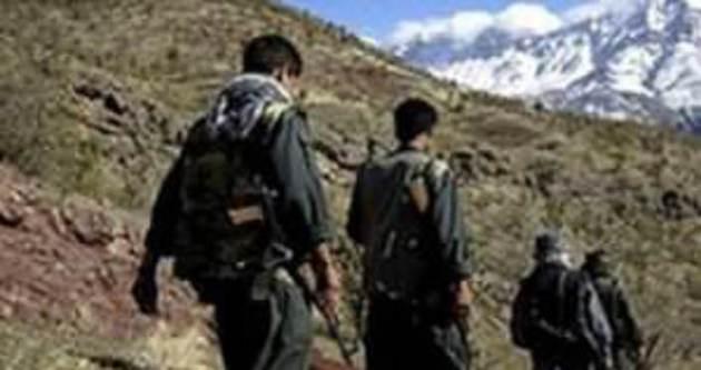 Ceylanpınar'da 3 terörist yakalandı