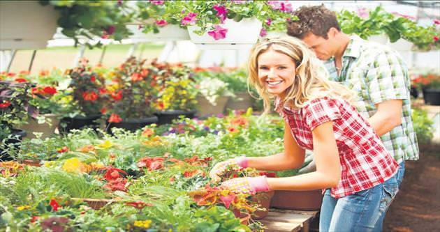 Diyabete karşı bahçe sulayın çiçek yetiştirin