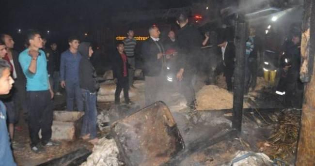 Cizre'de hayvan barınağında yangın