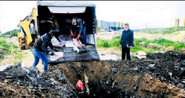 Kaçak etler toprağa gömülerek imha edildi