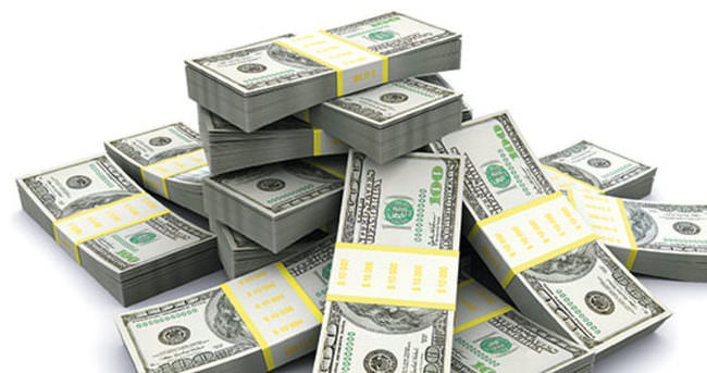 Dolar 2 haftanın en yükseğinde