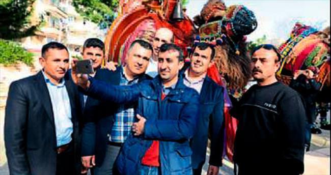 Kumluca'da deve güreşleri başlıyor