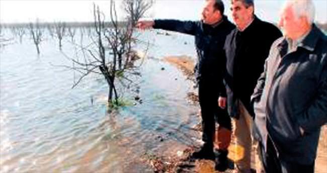 Bursa Ovası'ndaki zarar meclis gündeminde