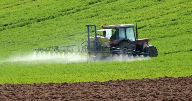 Nohut, mercimek ve kuru fasulyeye prim desteği artıyor