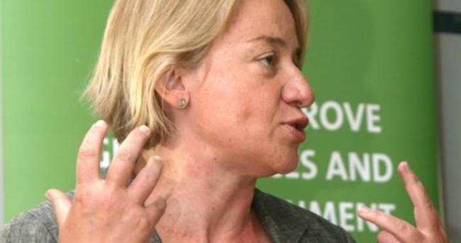 Yeşiller Başkanı: İsteyen DEAŞ'a katılabilir!