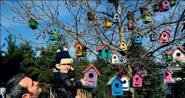Kuş evleri ağaçlara asıldı