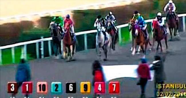 'Atlara özgürlük' için yarış pistine indiler