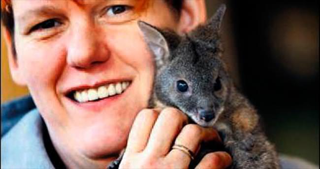 Yavru kanguruyu bakıcısı sahiplendi
