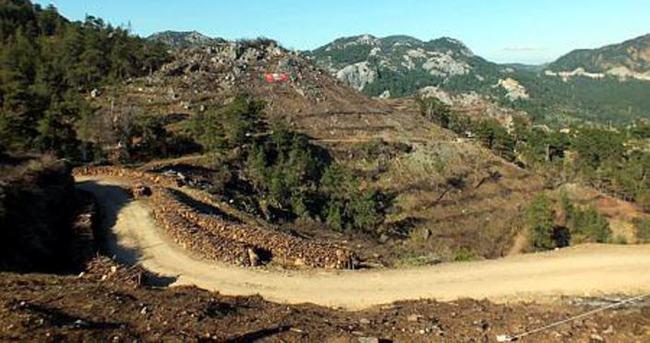 Marmaris'in yanan ciğerlerine 1,5 milyon tohum ekildi