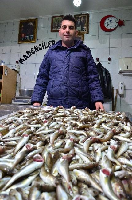 Kötü Hava Şartları Balıkçıları Vurdu