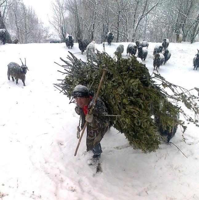 Kar Yağışı Çiftçileri Sevindirdi
