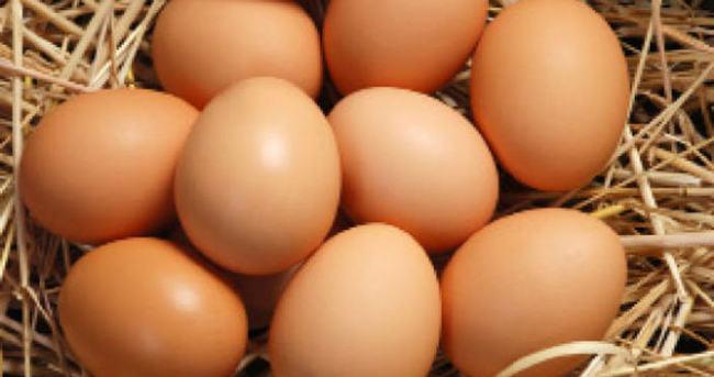 Yumurta ihracatı 4.5 milyon dolar arttı