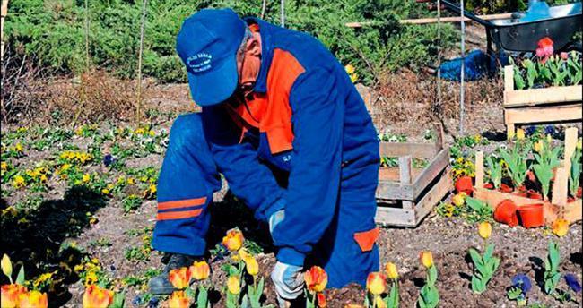 Rengarenk çiçeklerle Mamak'ta bahar hazırlığı