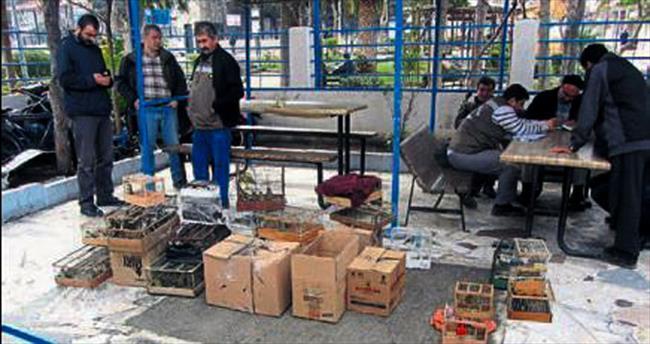 İzmir Kuş Pazarı'na operasyon yapıldı