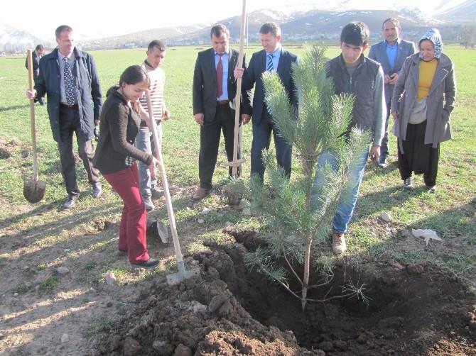 Köylerimiz Şehir Olsun Projesi Kapsamında Ağaç Dikimi Yapıldı