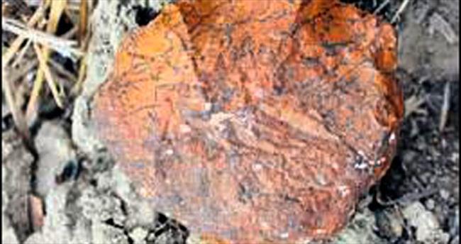 Yontma taş insanın kafatasına ulaşıldı