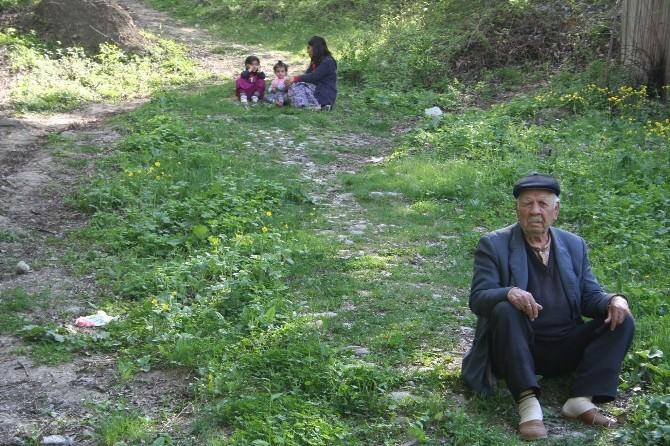 Malatya'daki Yaşılar Mutlu