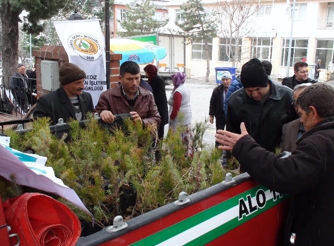 Gediz Orman İşletme Müdürlüğü 2 Bin 600 Adet Ağaç Fidanı Dağıttı