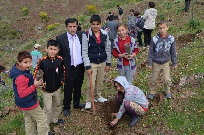 Ortaca'da Öğrenciler Bin Fidanı Toprak İle Buluşturdu