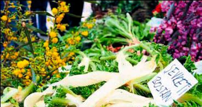 Ege toprakları vitamin deposu