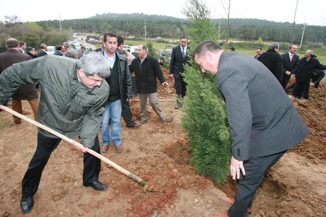 """Karaosmanoğlu: """"Ormanlar Mirasımızdır"""""""