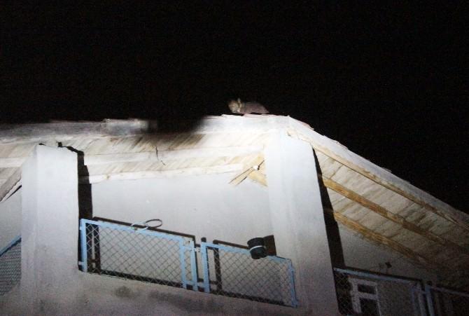 (Özel Haber) Atlamak İçin Çıktığı Çatıdan Ağabey Tokadı İndirdi