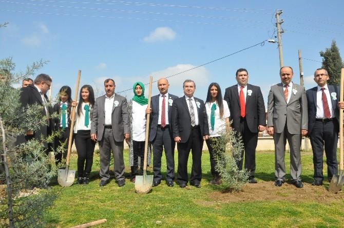 Öğrenciler Okulun Bahçesine 310 Fidan Dikti