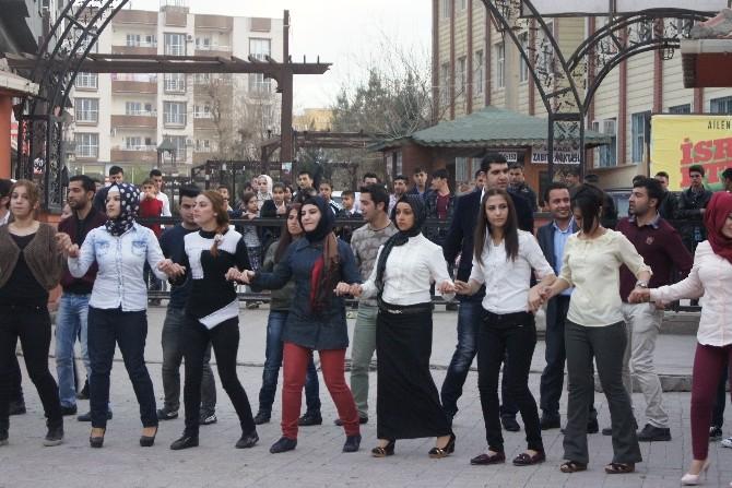 Cizre MYO' Da 2. Geleneksel Dayanışma Günü
