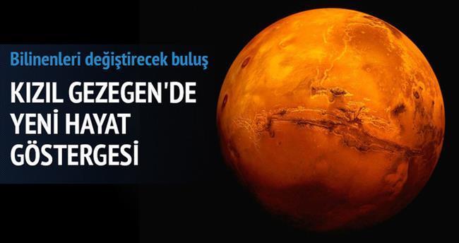 Mars'ta yeni hayat göstergesi şaşırttı