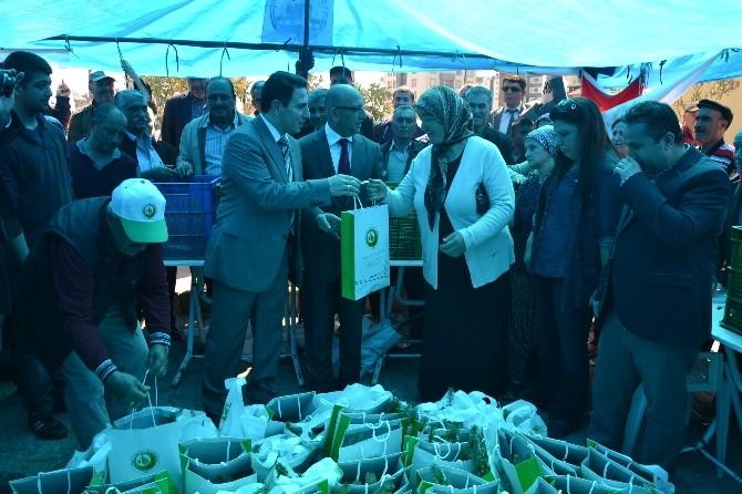 Kozan'da On Bin Eve On Bin Fidan Dağıtılacak