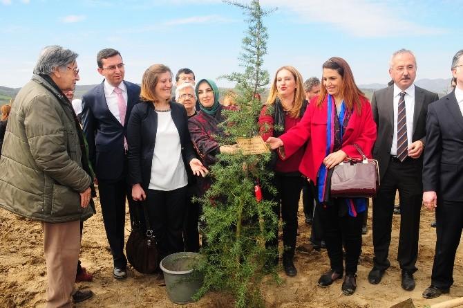 Gönül Elçileri Bereket Ormanı Projesi