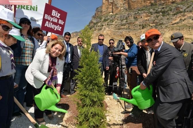 Mersin'de Gönül Elçileri Bereket Ormanı Oluşturuldu