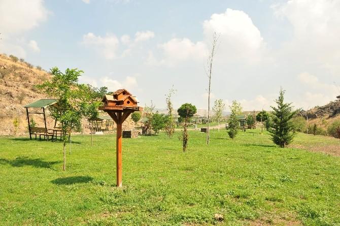 Keçiören Kartaltepe Kent Ormanı İle Nefes Alacak