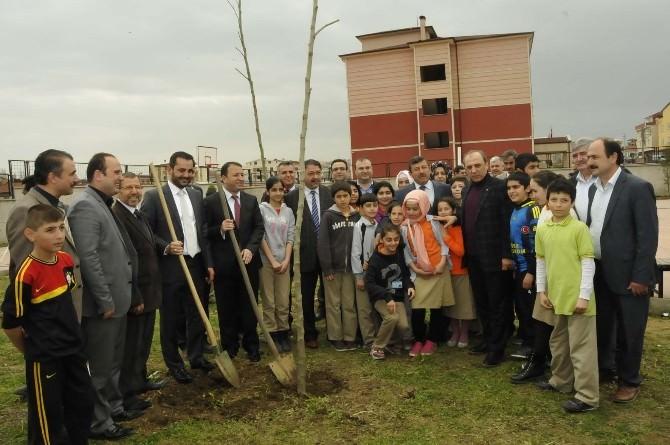 Darıca'da Orman Haftası Unutulmadı